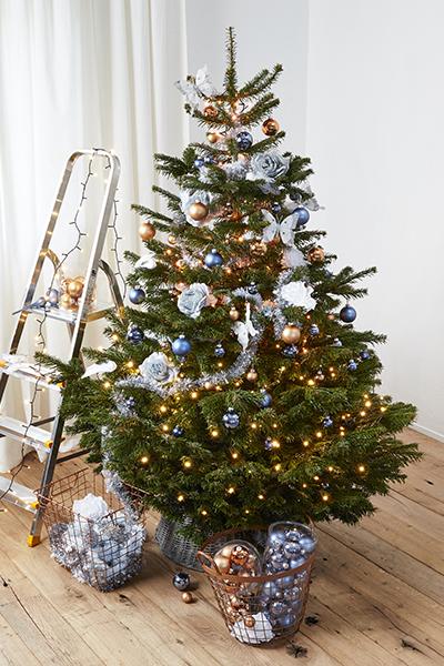 Voor Welke Kerstboom Ga Jij Praxis Blog