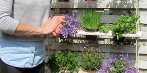 Maak een hangend plantenrekje