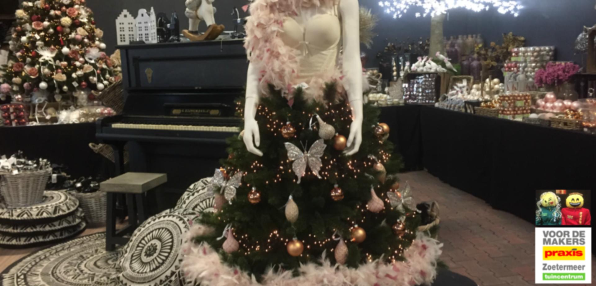 Alternatieve Kerstboom Voordemakersnl