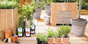 Grow your own | Eigen Huis en Tuin