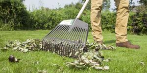 Bladblazers en dakgoot-egels: bladeren bestrijden in de herfst
