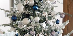 Voor welke kerstboom ga jij?