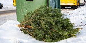 Je kerstboom opruimen? 5 tips!
