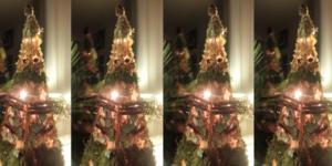 Van een 'Goude(n) oude' piramide --> 'Nieuwe Natuurlijke' trendy boom
