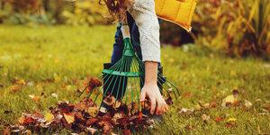 Maak je tuin winterklaar in 5 stappen