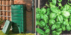 Een duurzame tuin? 5 tips!
