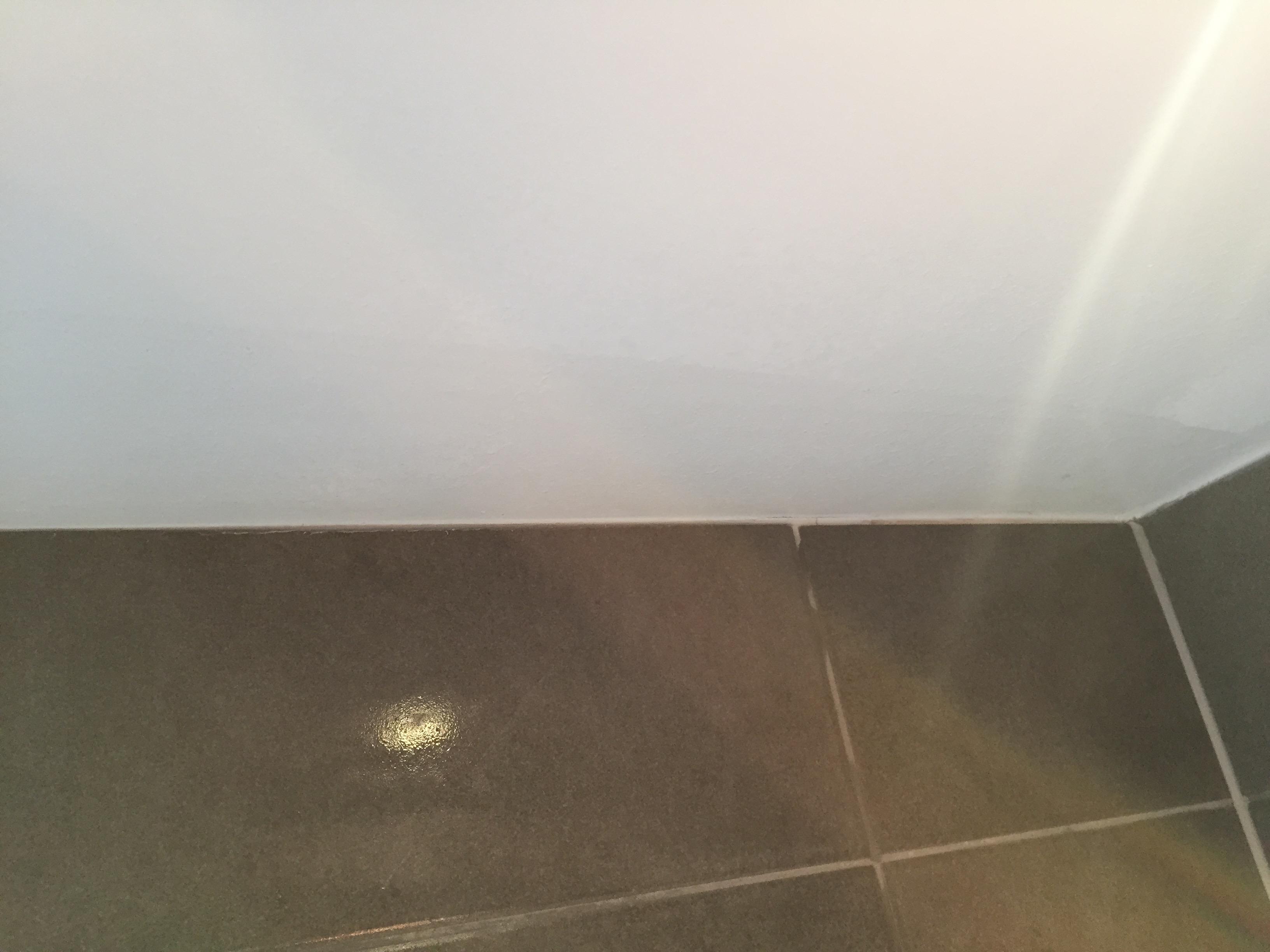 Stunning Schimmel Badkamer Verwijderen Plafond Pictures - House ...