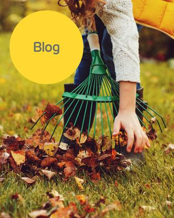 Maak je tuin winterklaar in 5 stappen!
