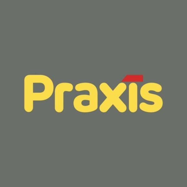Praxis Bouwmarkt